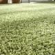 Hochfloorteppichboden in grün
